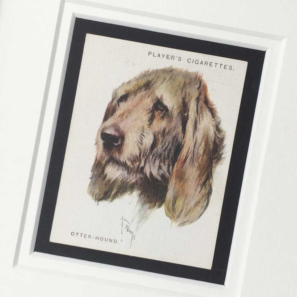 Otterhound Vintage Gifts - The Enlightened Hound