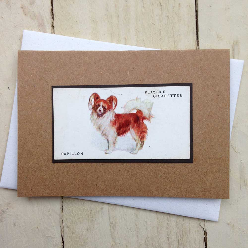 Papillon Vintage Greeting Card - The Enlightened Hound