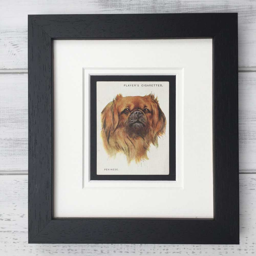 Vintage Gifts for Pekingese Lovers - The Enlightened Hound