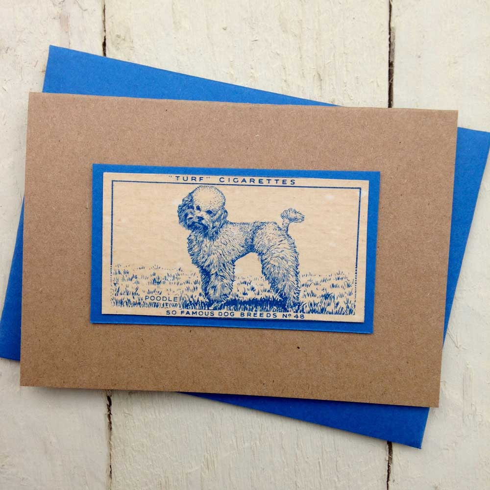 Poodle Vintage Greeting Card - The Enlightened Hound