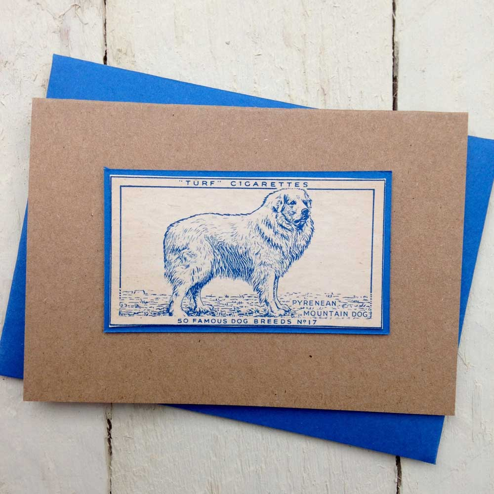 Pyrenean Mountain Dog greeting card - The Enlightened Hound