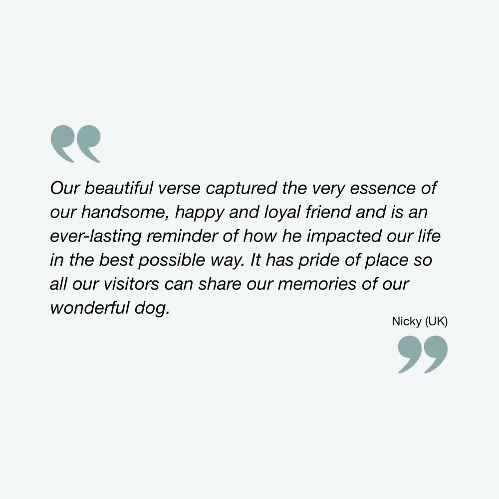 Testimonial | The Enlightened Hound