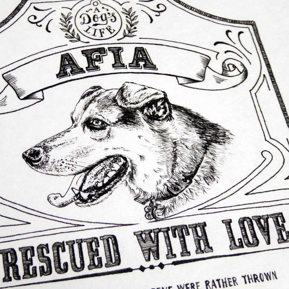 Rescue dog pet portrait illustration and poem by The Enlightened Hound