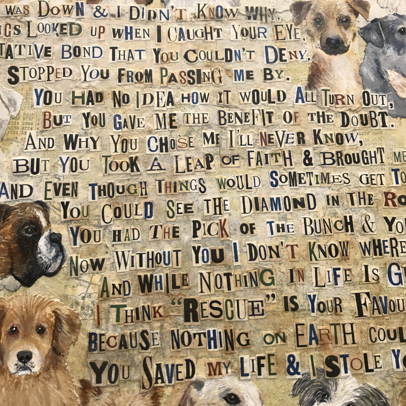 Rescue Dog poem by Debbie Kendall