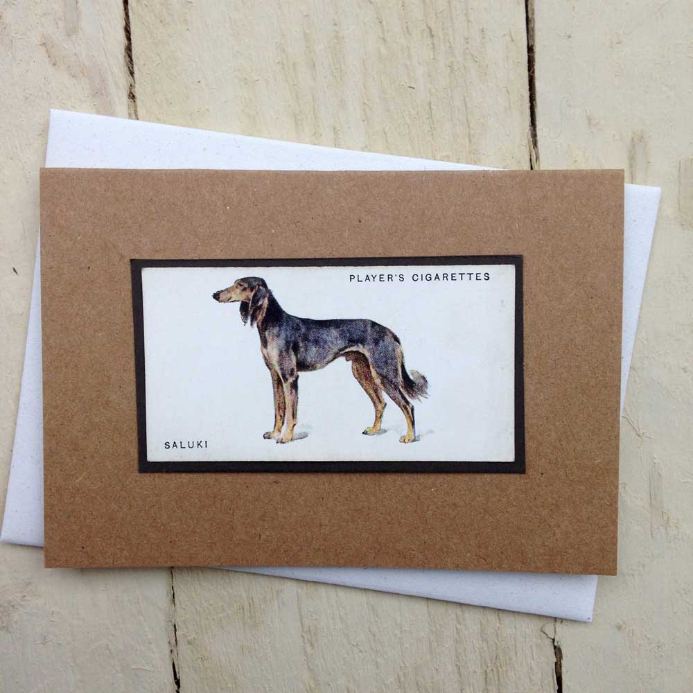 Saluki card - The Enlightened Hound