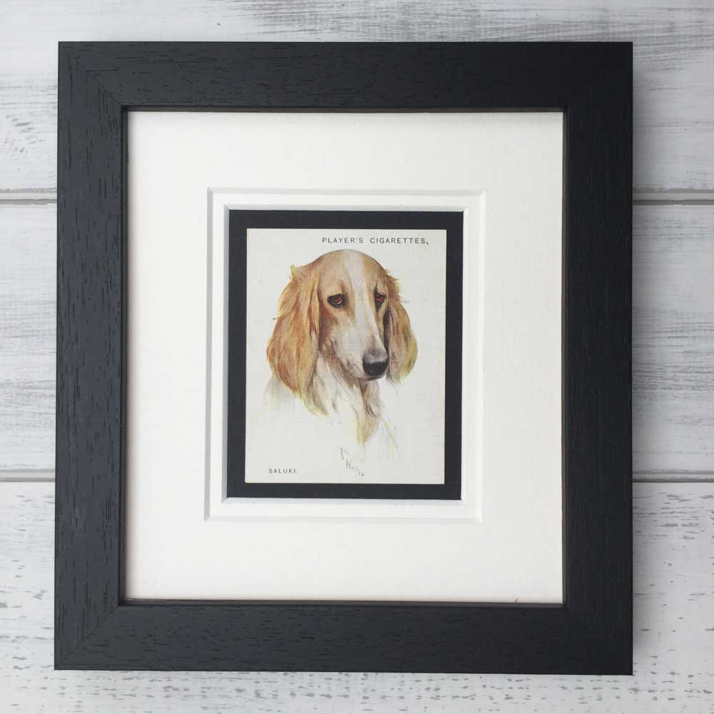 Vintage Gifts for Saluki Lovers - The Enlightened Hound