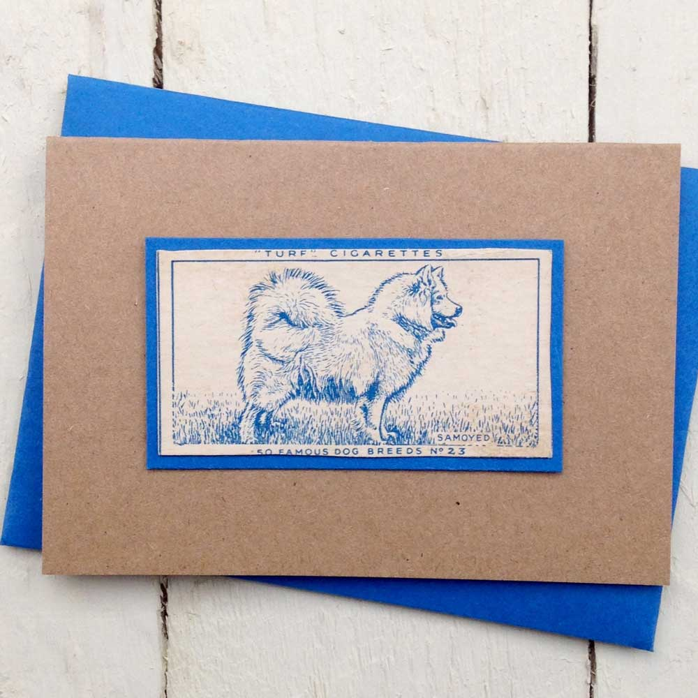 Samoyed Vintage Greeting Card - The Enlightened Hound