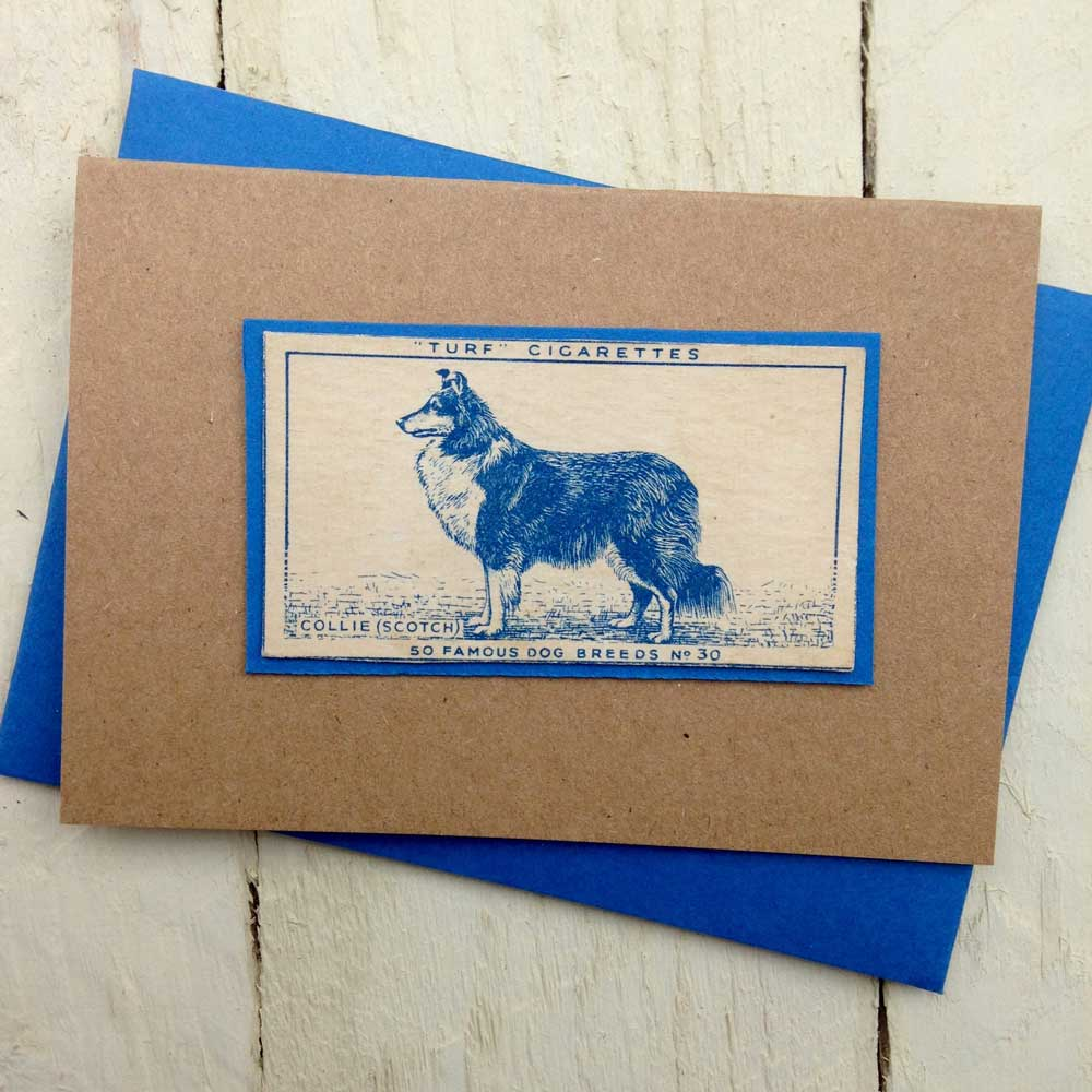 Scotch Collie Vintage Greeting Card - The Enlightened Hound