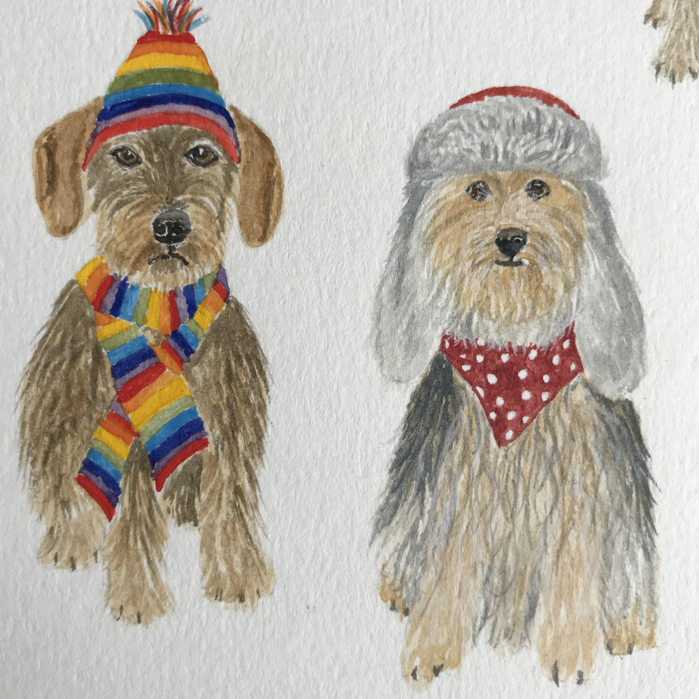 Scruffy dogs in hats and scarves illustration | The Enlightened Hound