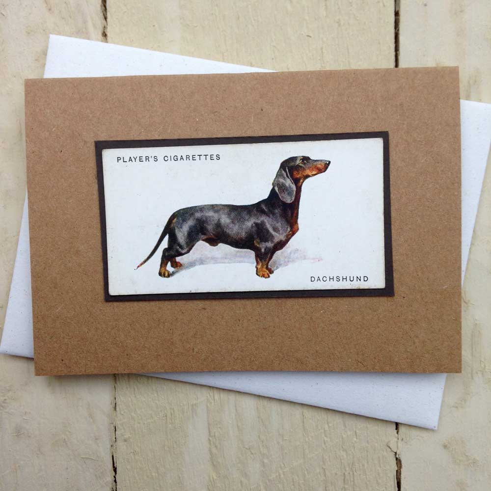 Dachshund Greeting Card - The Enlightened Hound