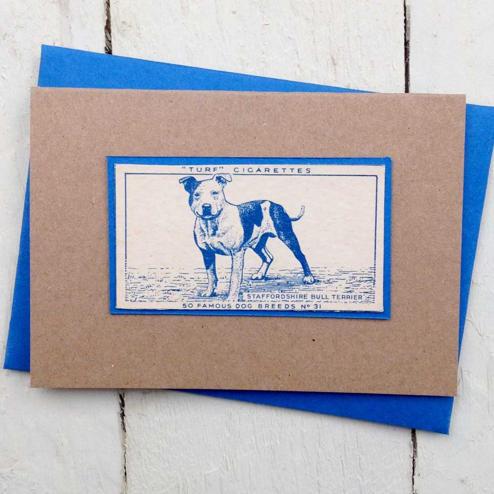 Staffordshire Bull Terrier Vintage Greeting Card - The Enlightened Hound