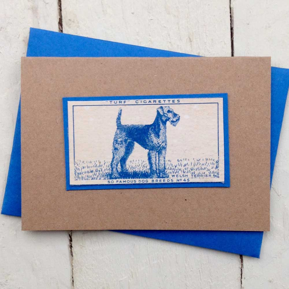 Welsh Terrier greeting card - The Enlightened Hound