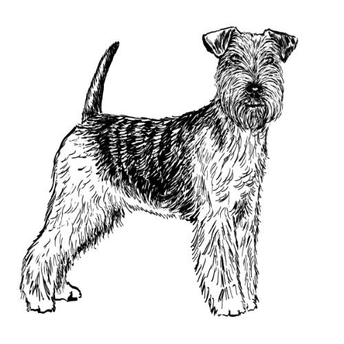 Welsh Terrier Illustration   The Enlightened Hound
