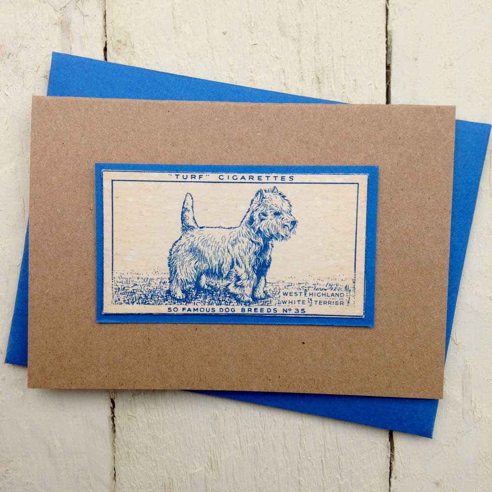 West Highland white terrier Greeting Card- The Enlightened Hound