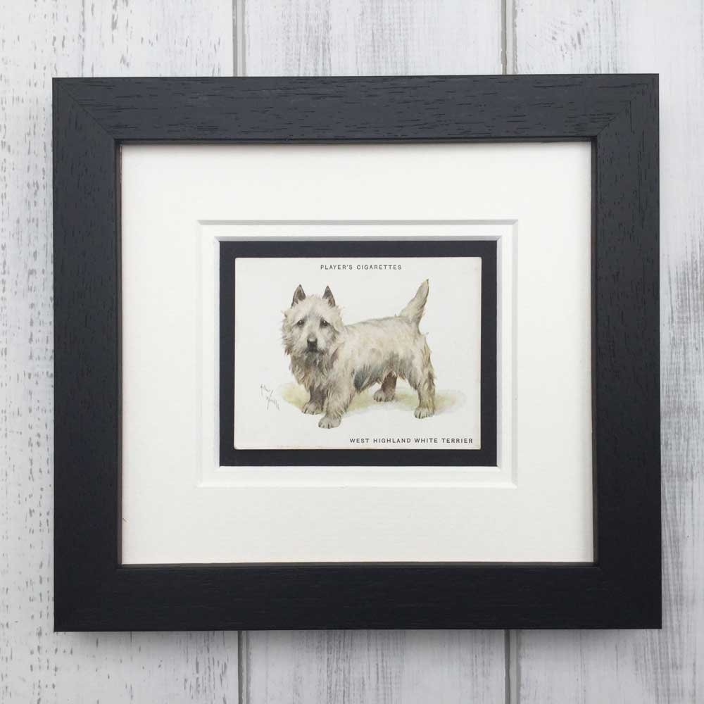 Vintage Gifts for West Highland white terrier Lovers - The Enlightened Hound