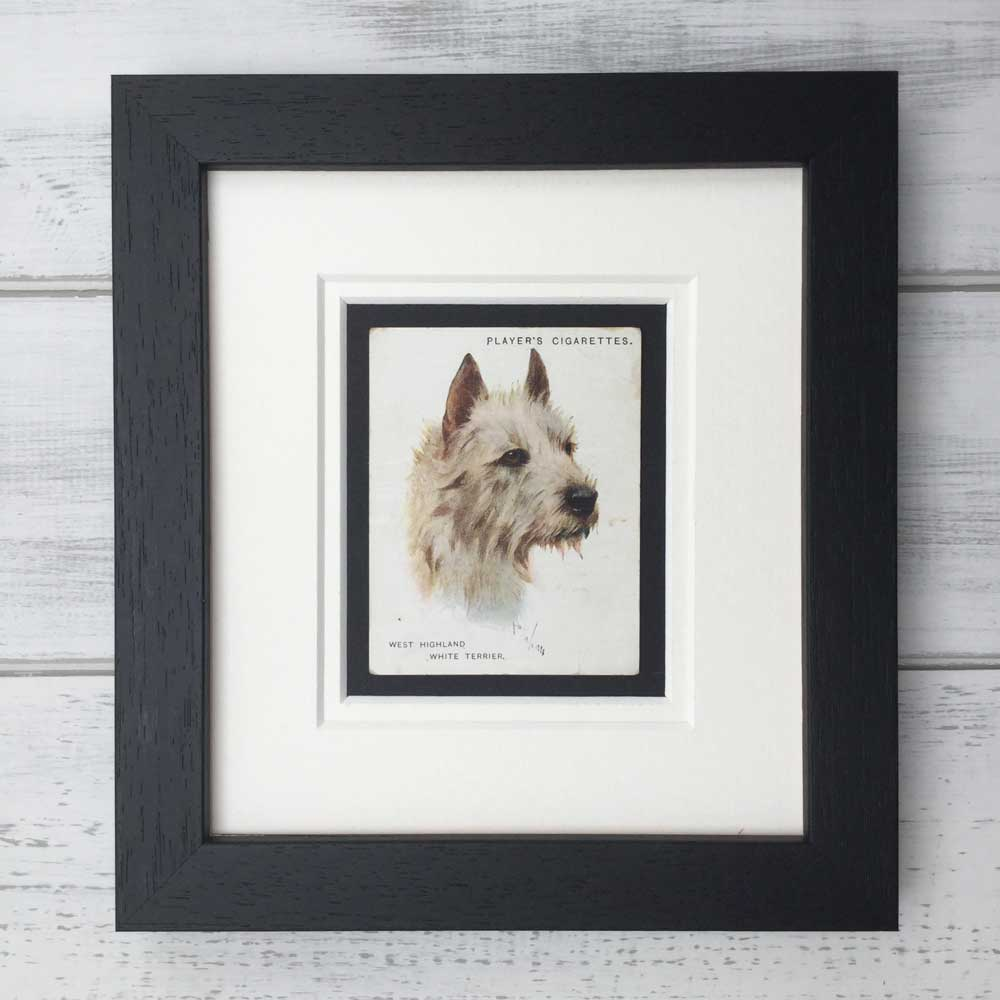 Vintage Gifts for Westie Lovers - The Enlightened Hound
