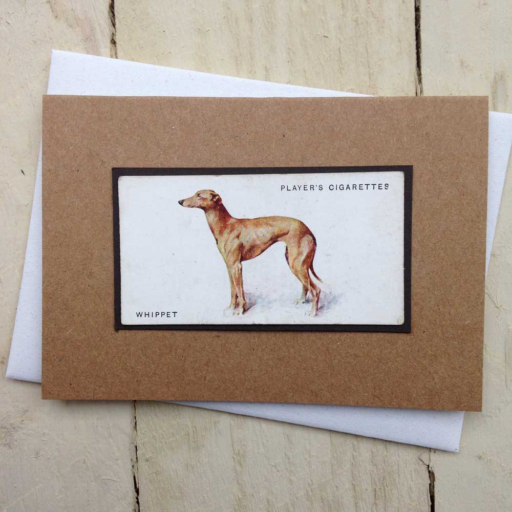 Whippet Vintage Style Greeting Card | The Enlightened Hound