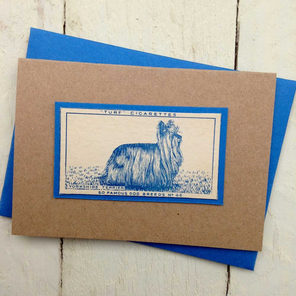 Yorkshire terrier Greeting Card- The Enlightened Hound